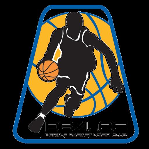 https://dbaloc.sn/wp-content/uploads/2020/12/cropped-debaloc-logo-1.png